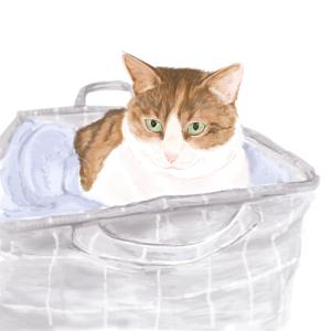 久しぶりの猫お絵描き
