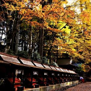 コヤツ様の聖地も 秋の装い