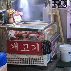 米国の名俳優が韓国の犬食文化を批判=韓国ネット反論「他国の文化に口出しすること自体…」