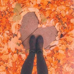 〇〇の秋♪