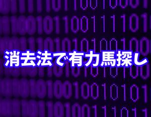 菊花賞2019 データ消去法