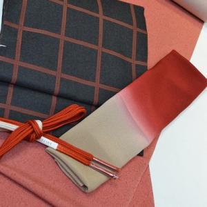 「かなり個性的な装い」一日1コーディネート小物チェンジ【047】江戸小紋&名古屋帯