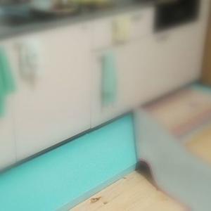 キッチン流し台の高さ? 介護環境改善以前の問題だ