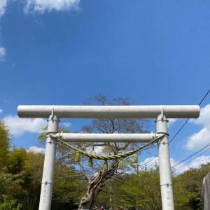 金村別雷神社 エンジョイ!春の例大祭