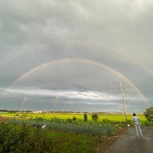 2021/07/11 の虹