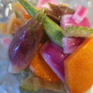 夏野菜のピクルスで元気だそうご飯‥・・ゴロ~~も暑い