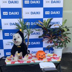 熊本で撮影会