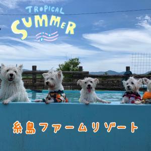 糸島ファーリゾートプール