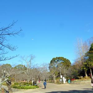 加古川 日岡山公園へ