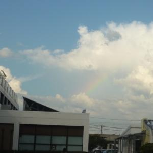 最近よく虹を見ます~♪