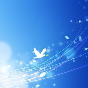 2月期間限定!【エンジェルヒーリングオラクルメッセージ】復活受付します!