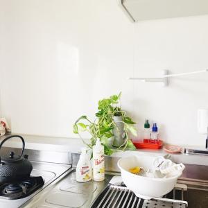 毎日のキッチン掃除に大活躍!