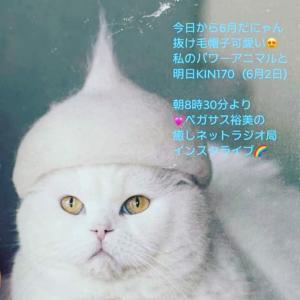 明日は、【癒しネットラジオ局】インスタライブします!