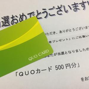 クオカ当選!種まきに芽が出てきました。500円のクオカード!