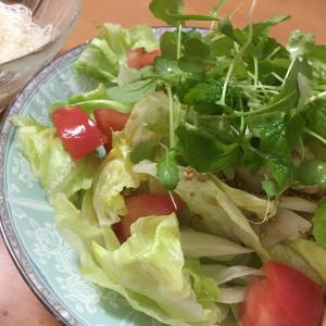 最高の老後の趣味。ベランダに植えたカブをサラダに。ちょっとだけ節約。