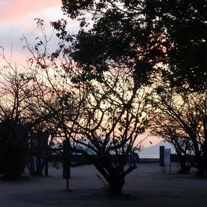 夕焼けの公園で