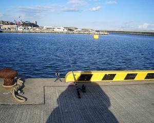 1月4日-那珂湊漁港(太平洋・ひたちなか市)
