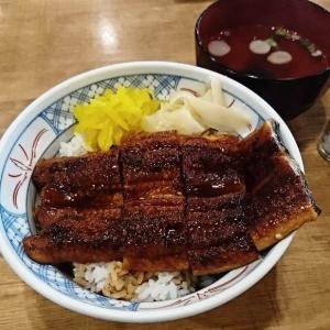 【土用の丑の日】磯丸水産のうな丼 株主優待券で頂きました。