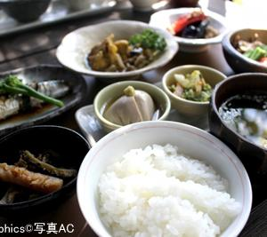 日本は世界有数の長寿国!食と栄養からその理由を探ると!?