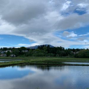 2021.05.17 水鏡に映る風景がある季節