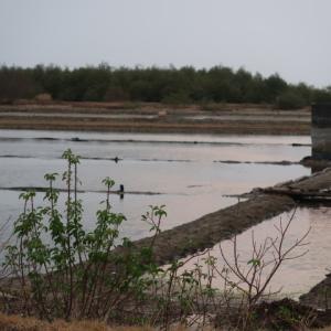 Saltpan in December 12月の塩田。雨季に入ったけど塩田はどうなっているのだろう?