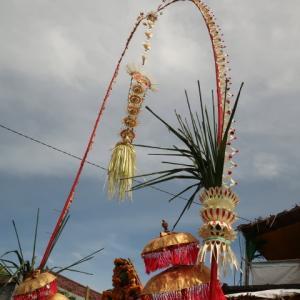 Going to Bali (4) Colored Janur Kuning 多色ジャヌル・クニンを発見。バリ風結婚式が盛んな日。何か特別な日だったんだと思う。