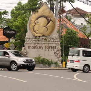 Going to Bali (5) ウブドに到着??日本人誰もいないけど、そういうもんなの?道路は混みすぎ。