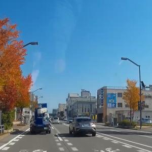街中でも紅葉が始まりました。