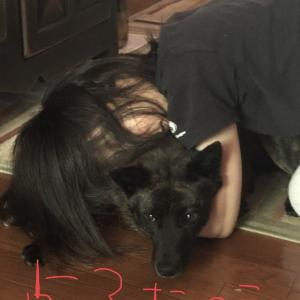 甲斐犬サンの、秋の夜長ならぬ梅雨の晴れ間の夜長の巻〜長ッ∑(゚Д゚)‼︎