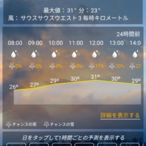 今朝のレガスピ及びマヨン山 2020年1月27日 月曜日