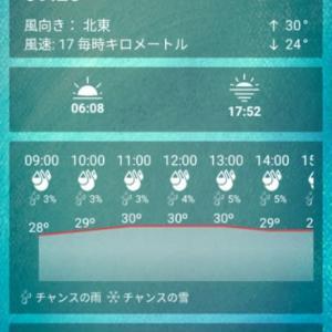 今朝のレガスピ及びマヨン山 2020年2月17日 月曜日