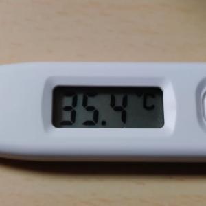 今日の菊川市の天気予報と今朝の体温
