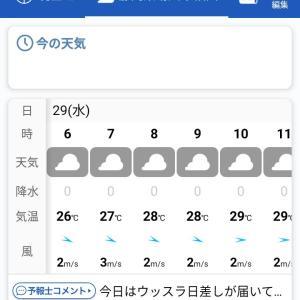 今日の菊川の天気予報 2020年7月29日朝