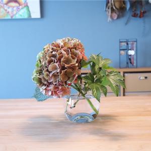 花に使う水に10円玉を漬け込むと長持ちする!