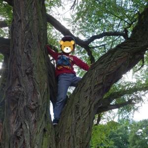蜜を避けてピクニック ~Picknick im Treptower Park~