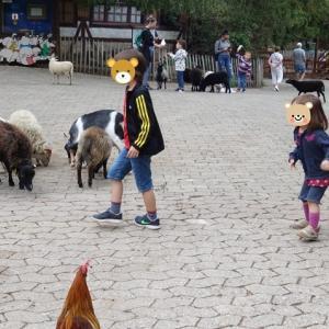 天気予報が外れた嬉しい週末 ~Familienpark Sottrum~