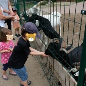 動物も居る恐竜パーク ~Tier-Freizeit-und Urzeit-Park~