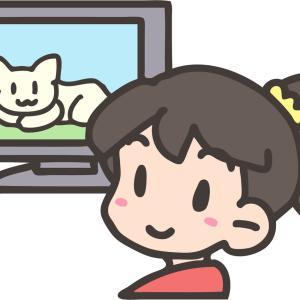 <5歳0か月>我が家のテレビ鑑賞事情とみている番組