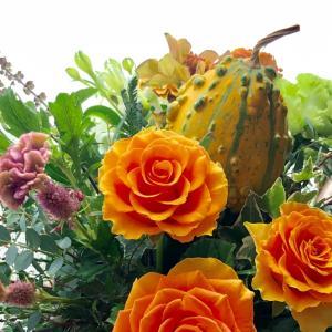 カボチャとオレンジの薔薇