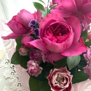 香りあるバラのブルジョア