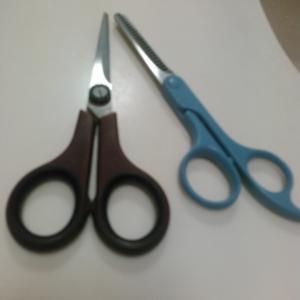 15年以上、髪を自分で切るミニマリスト