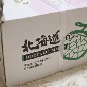 沖縄からメロン