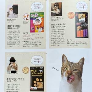 『ねこのきもち』6月号にeva登場!