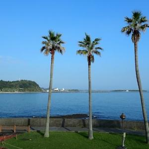 #598宮崎県「青島サンクマール」で「朝食バイキング」を食べてきました。