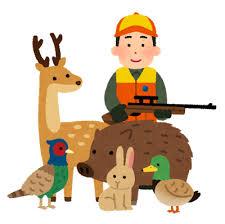 鳥獣保護法違反 罰則!