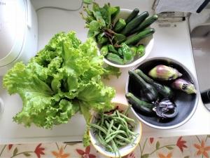 夏野菜 毎日食卓に!