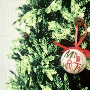 ミニマリストでも赤ちゃんが居てもクリスマスツリーが飾りたい!ツリーは年々育てる派。