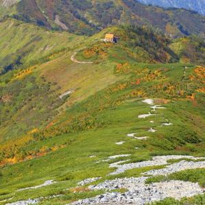秋山シーズ到来!北アルプスの稜線へ (Road to PIZZA)  #登山  #山   #北アルプス #鹿島槍ヶ岳