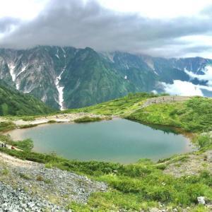 盛夏の唐松岳(1) #山の日 #登山 #北アルプス #山