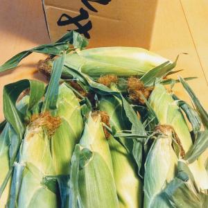 十六穀+トウモロコシご飯を作って食べた報告